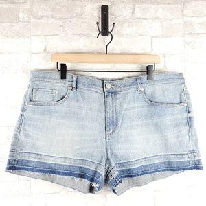 Loft Denim Jean Shorts   Plus Size 16